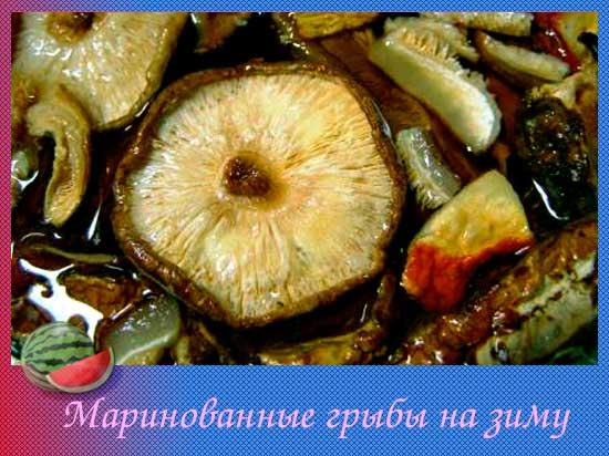 Маринованные грибы на зиму