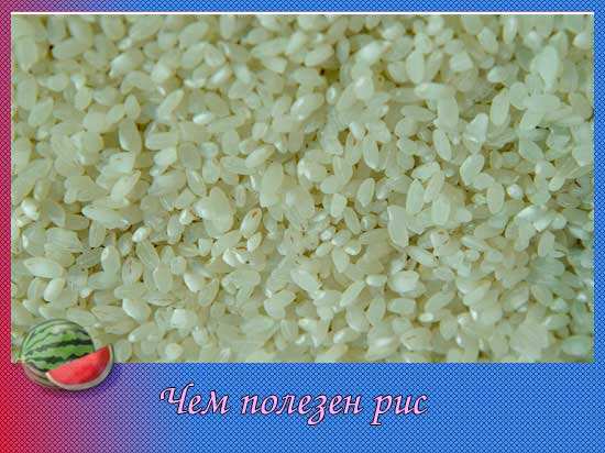 чем полезен рис